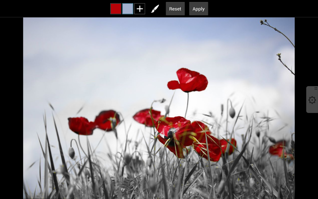 how to use color splash effect