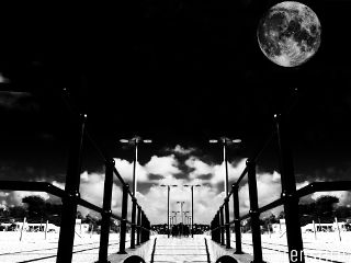 photography monochrome blackandwhite black & white moon