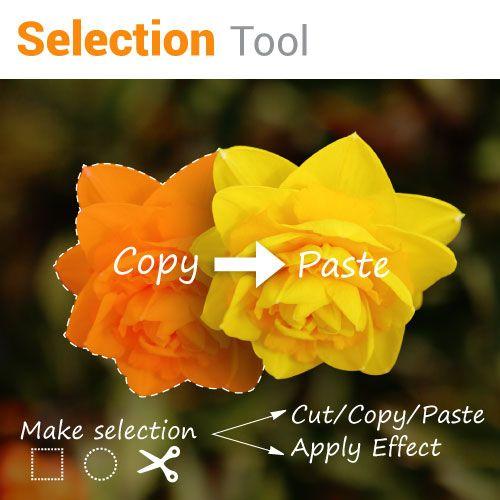 photo editing selection tool