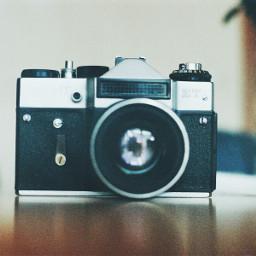 vintagefinds retro vintage camera pale