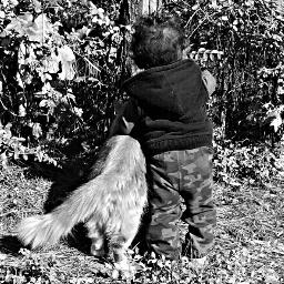 blackandwhite nature photography petsandanimals mansbestfriend