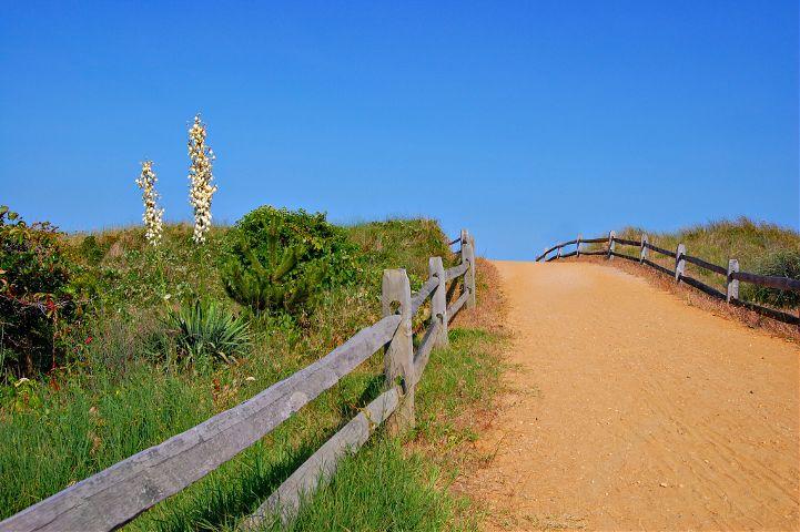 beach summer jerseyshore missingdad