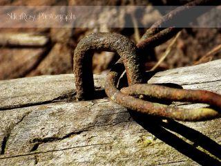 photography vintage retro rust wood