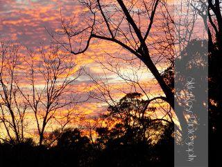 waplookup nature photography sunset