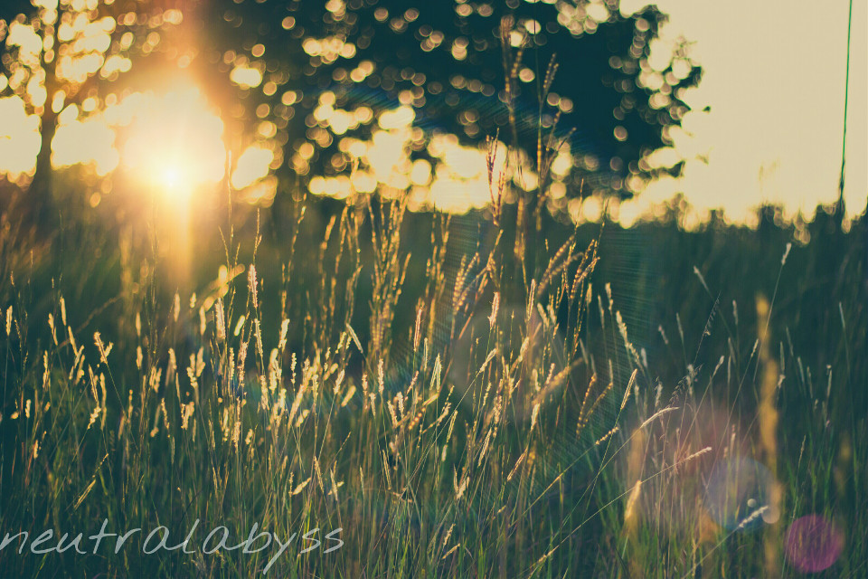 More lens flair!! :D #WAPlensflare #photography #nature #colorful #sunset #love